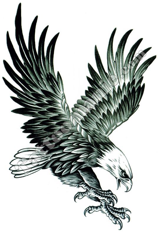 tatouage temporaire aigle g ant sur. Black Bedroom Furniture Sets. Home Design Ideas
